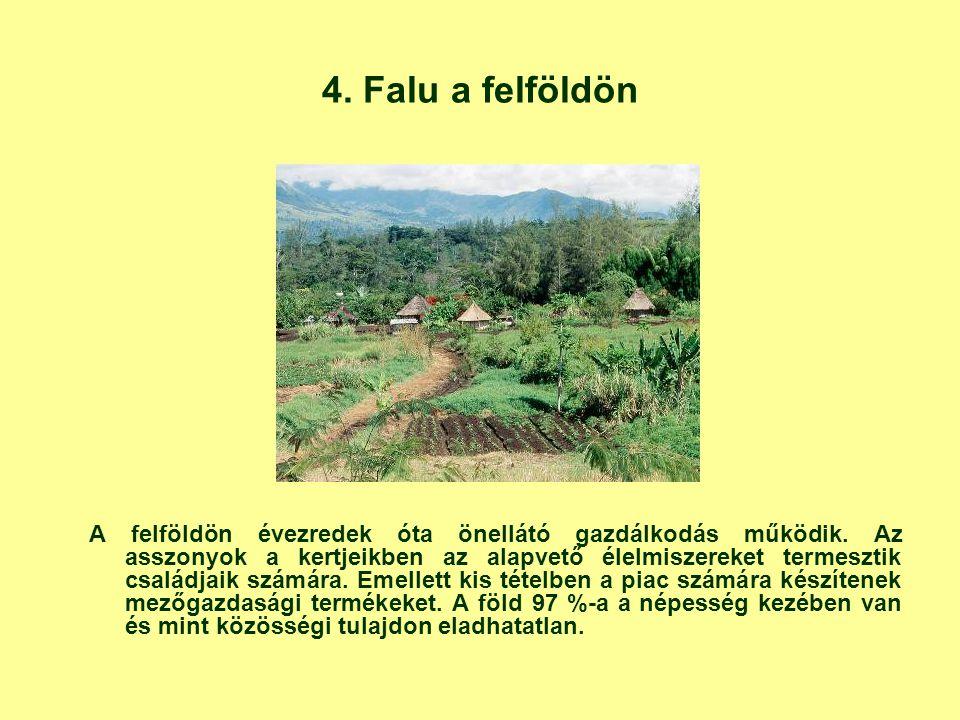 4. Falu a felföldön A felföldön évezredek óta önellátó gazdálkodás működik. Az asszonyok a kertjeikben az alapvető élelmiszereket termesztik családjai