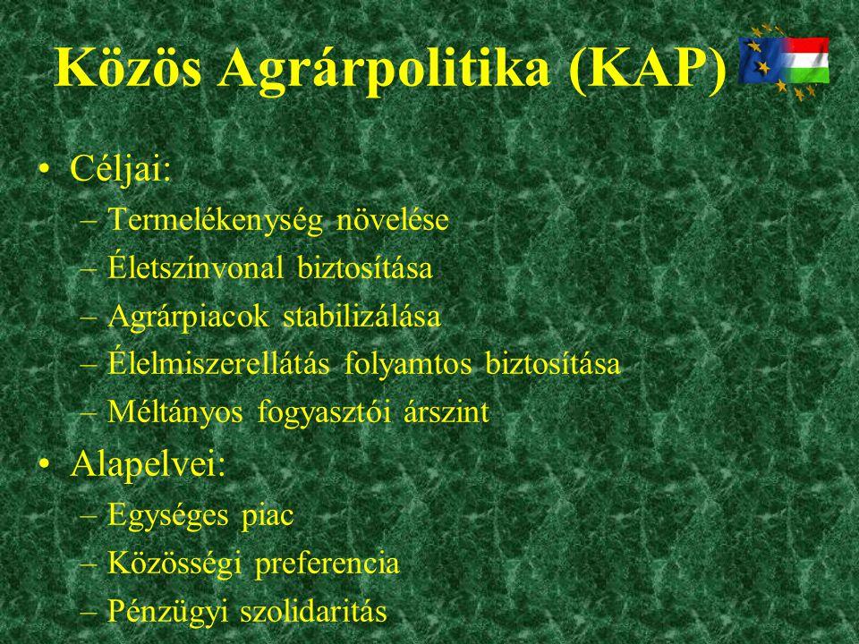 Közös Agrárpolitika (KAP) •Céljai: –Termelékenység növelése –Életszínvonal biztosítása –Agrárpiacok stabilizálása –Élelmiszerellátás folyamtos biztosí