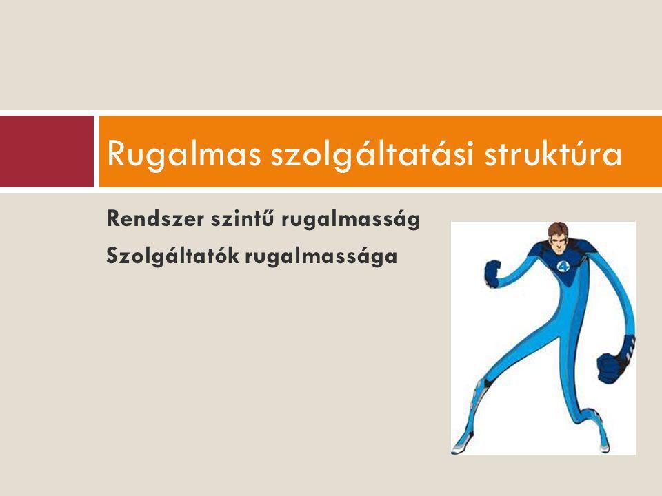 Rendszer szintű rugalmasság Szolgáltatók rugalmassága Rugalmas szolgáltatási struktúra
