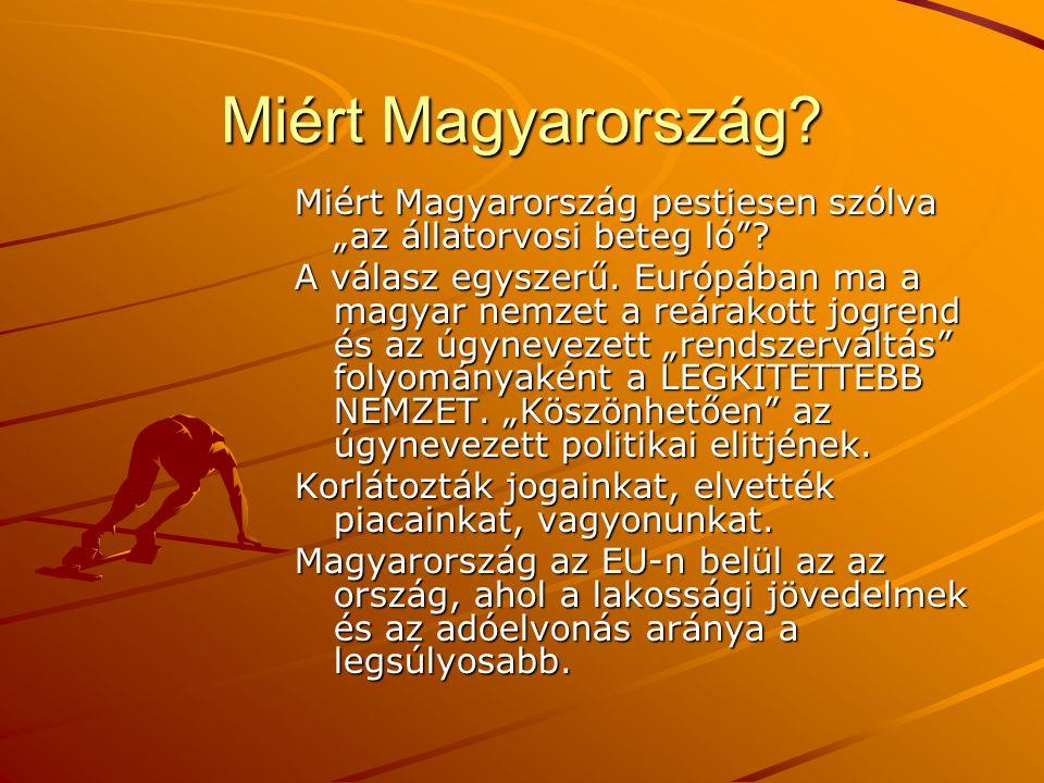 """Miért Magyarország? Miért Magyarország pestiesen szólva """"az állatorvosi beteg ló""""? A válasz egyszerű. Európában ma a magyar nemzet a reárakott jogrend"""