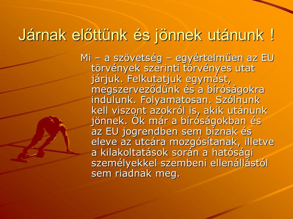 Járnak előttünk és jönnek utánunk ! Mi – a szövetség – egyértelműen az EU törvények szerinti törvényes utat járjuk. Felkutatjuk egymást, megszerveződü