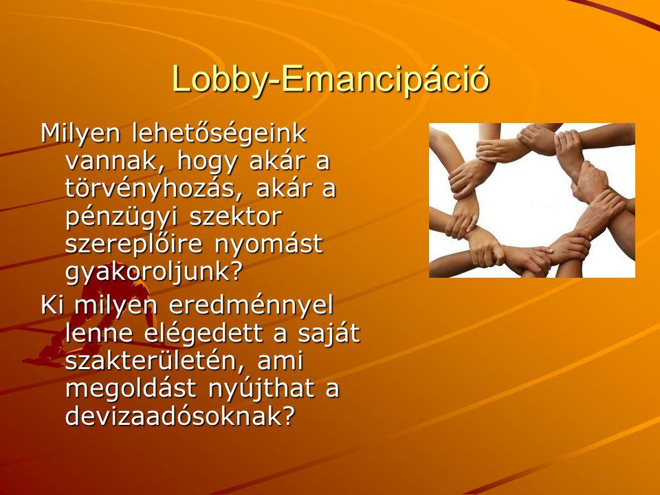 Lobby-Emancipáció Milyen lehetőségeink vannak, hogy akár a törvényhozás, akár a pénzügyi szektor szereplőire nyomást gyakoroljunk? Ki milyen eredménny