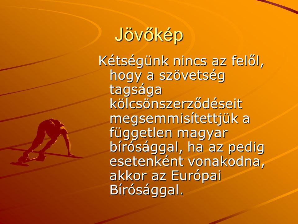 Jövőkép Kétségünk nincs az felől, hogy a szövetség tagsága kölcsönszerződéseit megsemmisítettjük a független magyar bírósággal, ha az pedig esetenként