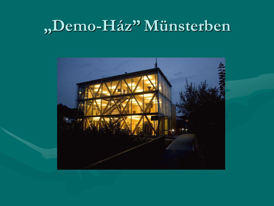 """""""Demo-Ház"""" Münsterben"""