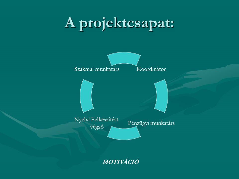 A projektcsapat: Koordinátor Pénzügyi munkatárs Nyelvi Felkészítést végző Szakmai munkatárs MOTIVÁCIÓ