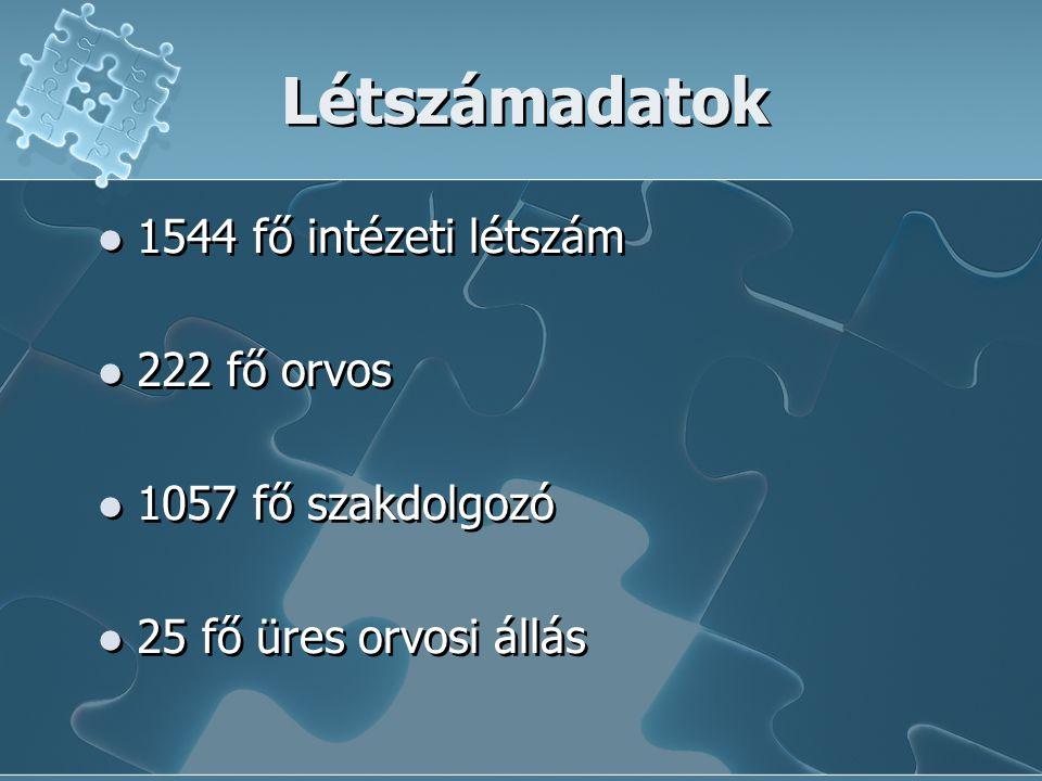 Létszámadatok  1544 fő intézeti létszám  222 fő orvos  1057 fő szakdolgozó  25 fő üres orvosi állás  1544 fő intézeti létszám  222 fő orvos  10