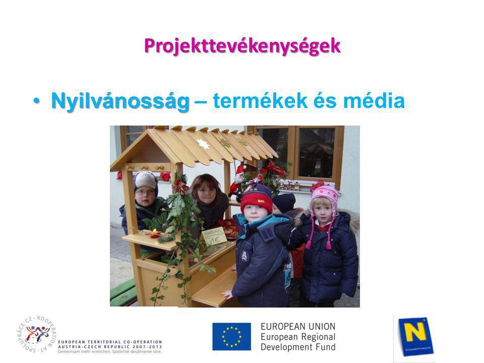 Projekttevékenységek •Nyilvánosság •Nyilvánosság – termékek és média
