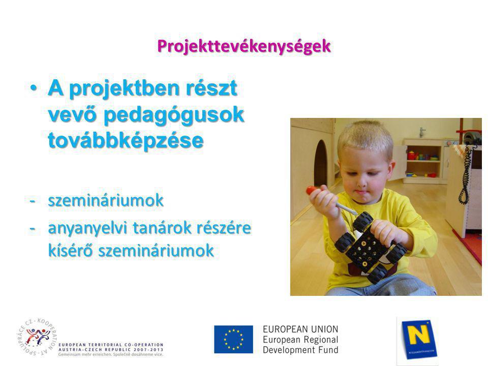 Projekttevékenységek •A projektben részt vevő pedagógusok továbbképzése -szemináriumok -anyanyelvi tanárok részére kísérő szemináriumok