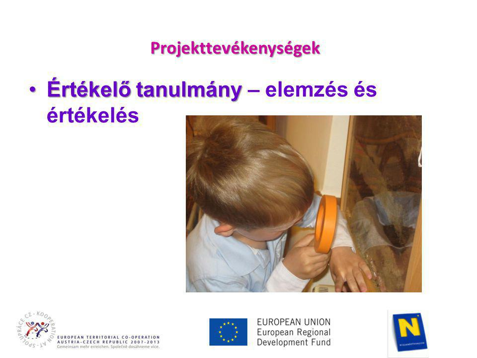 Projekttevékenységek •Értékelő tanulmány •Értékelő tanulmány – elemzés és értékelés
