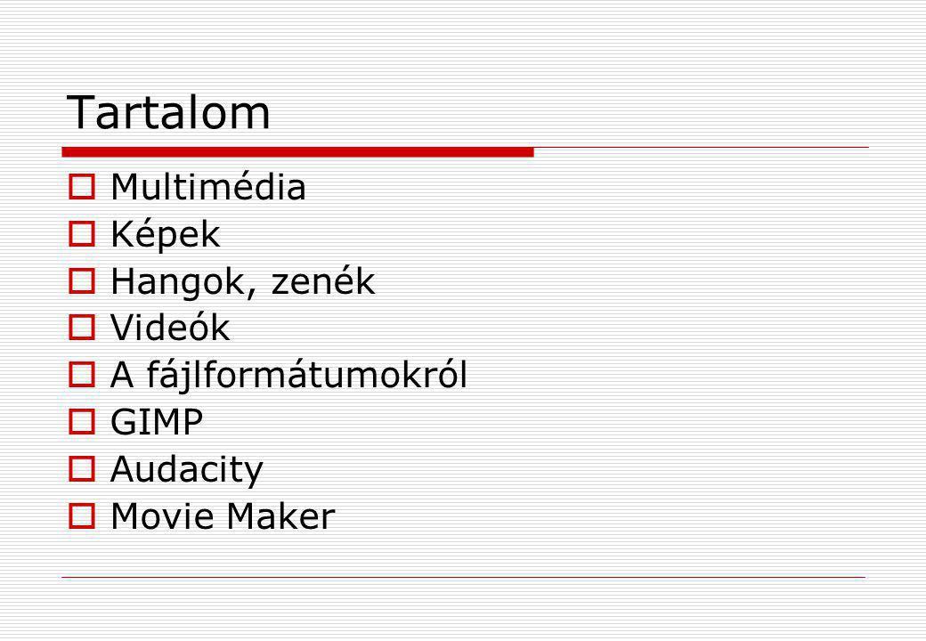 Tartalom  Multimédia  Képek  Hangok, zenék  Videók  A fájlformátumokról  GIMP  Audacity  Movie Maker