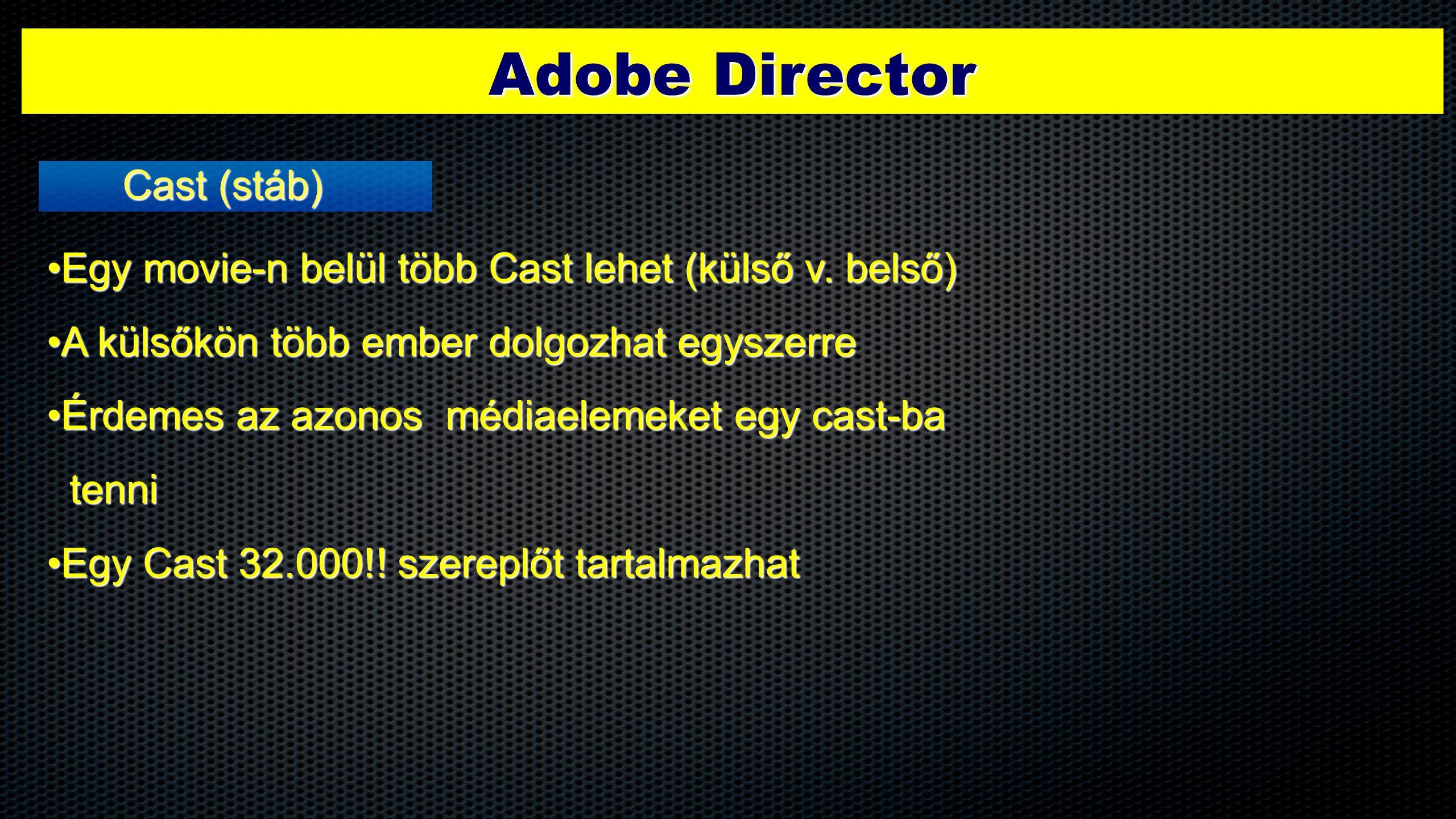 Adobe Director Cast (stáb) •Egy movie-n belül több Cast lehet (külső v. belső) •A külsőkön több ember dolgozhat egyszerre •Érdemes az azonos médiaelem