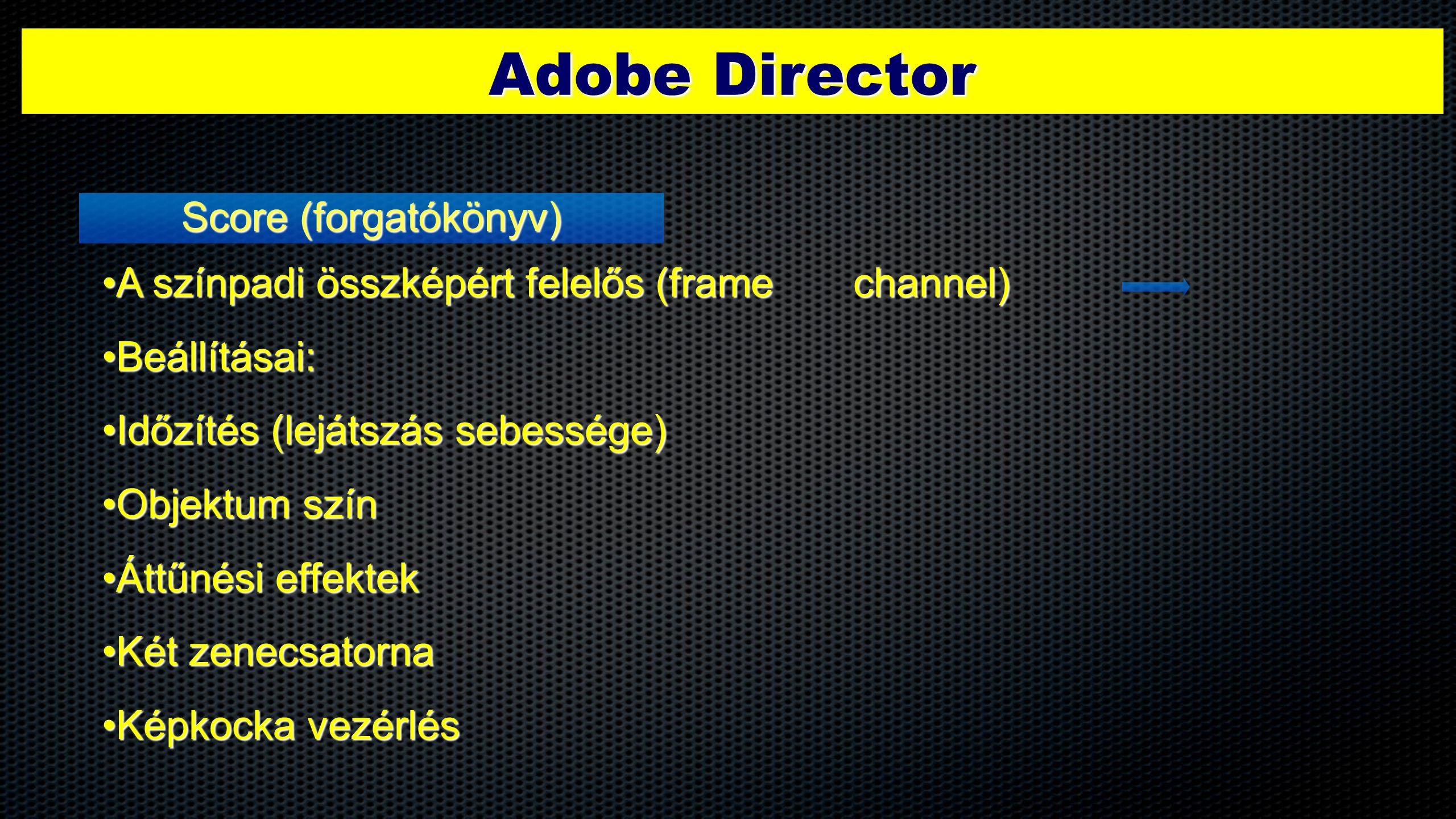 Adobe Director Score (forgatókönyv) •A színpadi összképért felelős (frame channel) •Beállításai: •Időzítés (lejátszás sebessége) •Objektum szín •Áttűn
