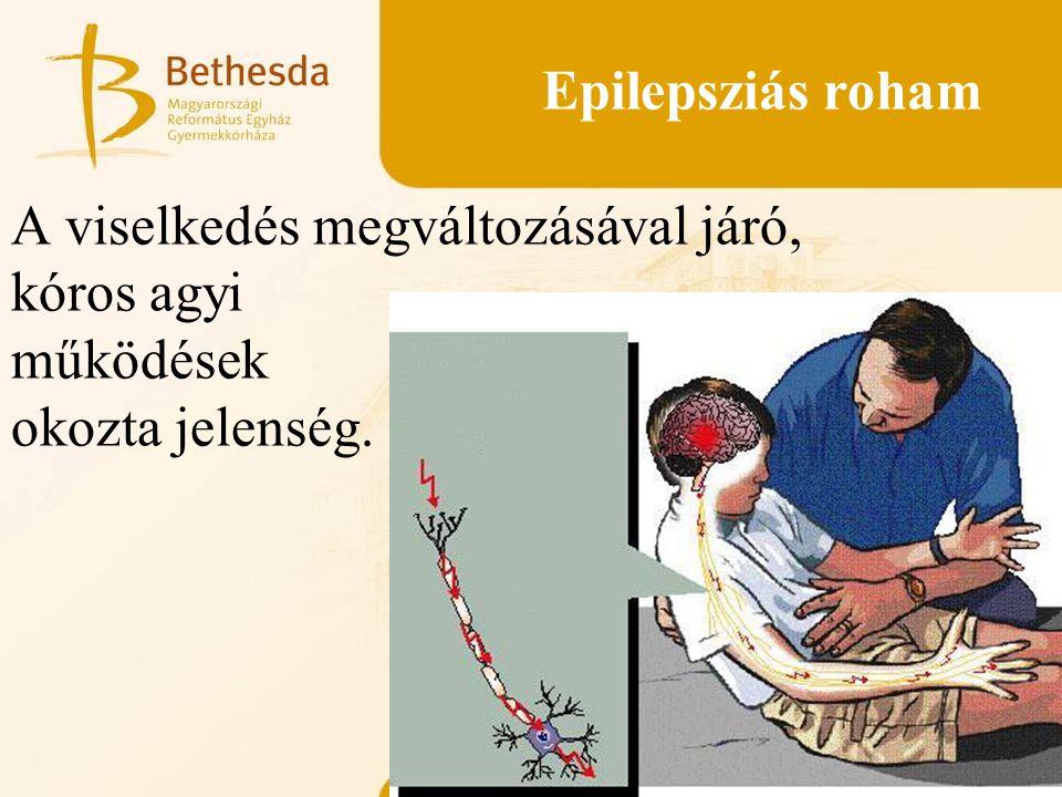 Epilepsziás roham A viselkedés megváltozásával járó, kóros agyi működések okozta jelenség.