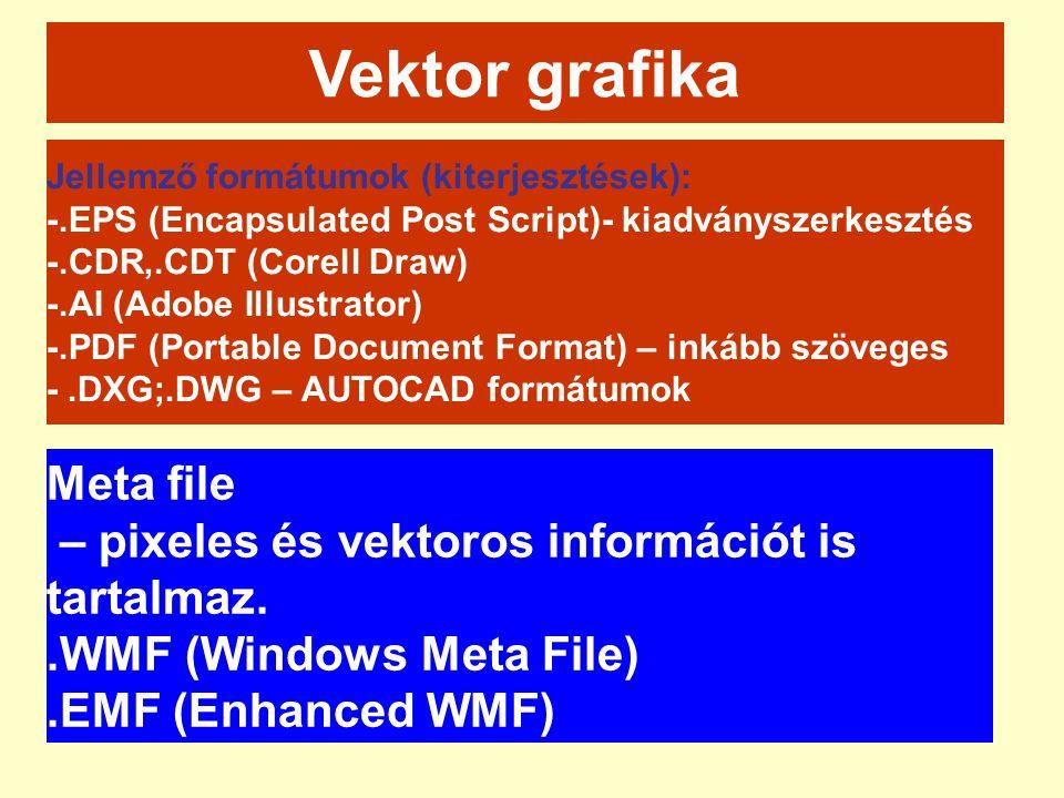 Vektor grafika Jellemző formátumok (kiterjesztések): -.EPS (Encapsulated Post Script)- kiadványszerkesztés -.CDR,.CDT (Corell Draw) -.AI (Adobe Illust
