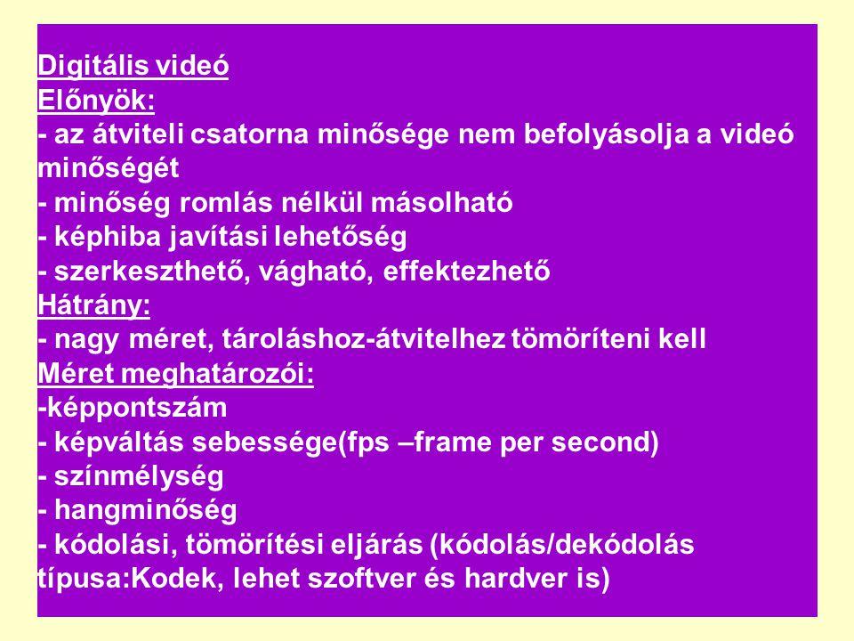 Videó Digitális videó Előnyök: - az átviteli csatorna minősége nem befolyásolja a videó minőségét - minőség romlás nélkül másolható - képhiba javítási