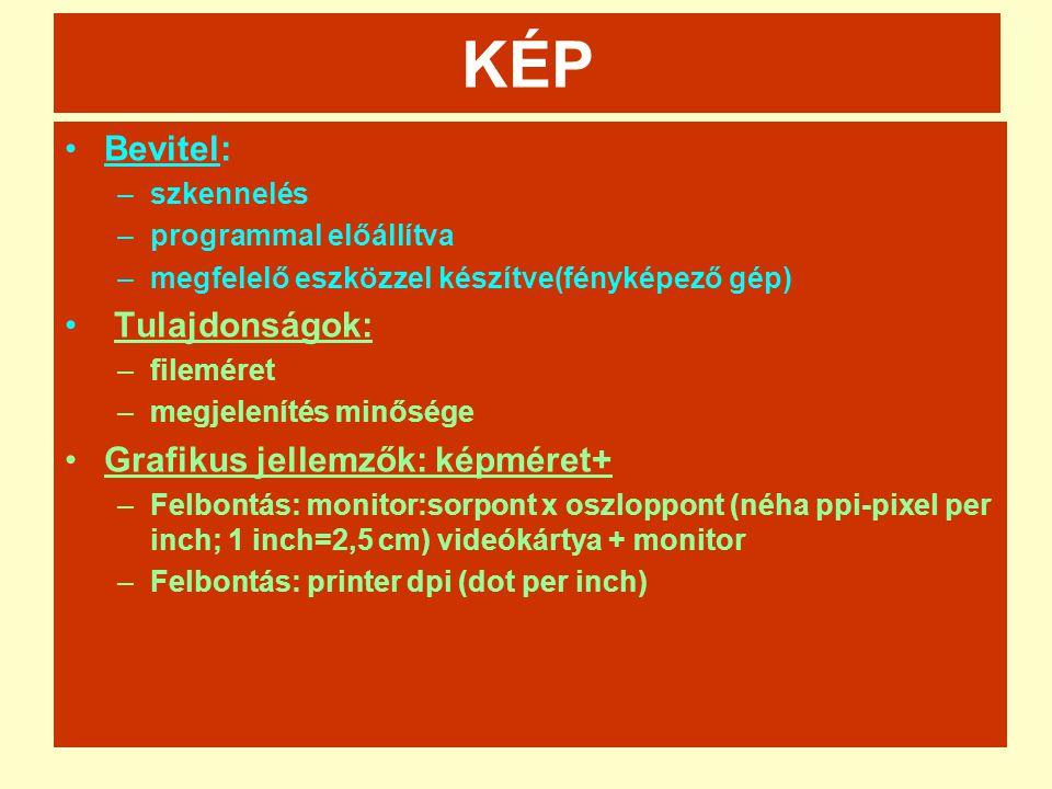 Vektor grafika Jellemző formátumok (kiterjesztések): -.EPS (Encapsulated Post Script)- kiadványszerkesztés -.CDR,.CDT (Corell Draw) -.AI (Adobe Illustrator) -.PDF (Portable Document Format) – inkább szöveges -.DXG;.DWG – AUTOCAD formátumok Meta file – pixeles és vektoros információt is tartalmaz..WMF (Windows Meta File).EMF (Enhanced WMF)