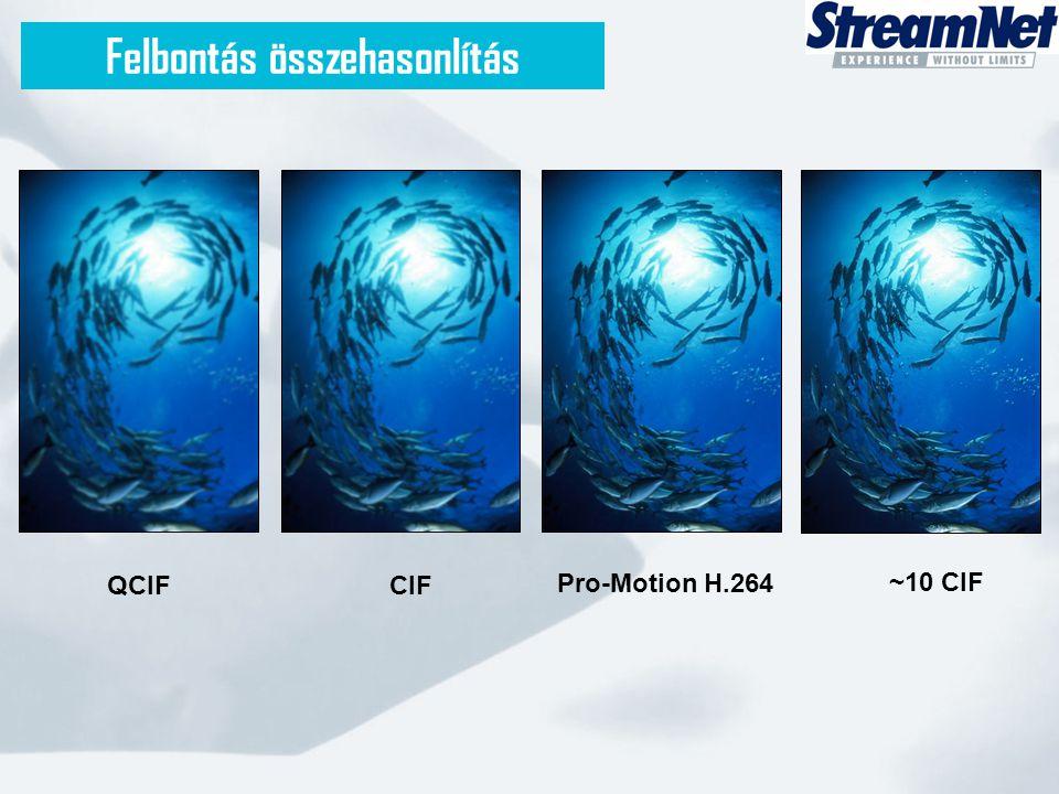 Felbontás összehasonlítás QCIFCIF Pro-Motion H.264 ~10 CIF