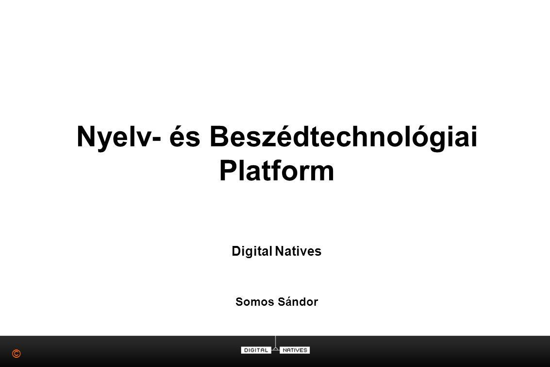 © Nyelv- és Beszédtechnológiai Platform Digital Natives Somos Sándor