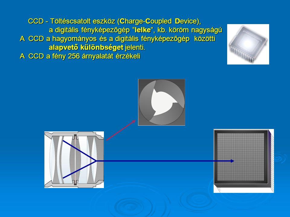 A bitek mindegyike egy értéket képvisel a bájt csoporton belül, ami 256 kombinációt eredményez A digitális képeket egymás melletti pixel milliók alkot