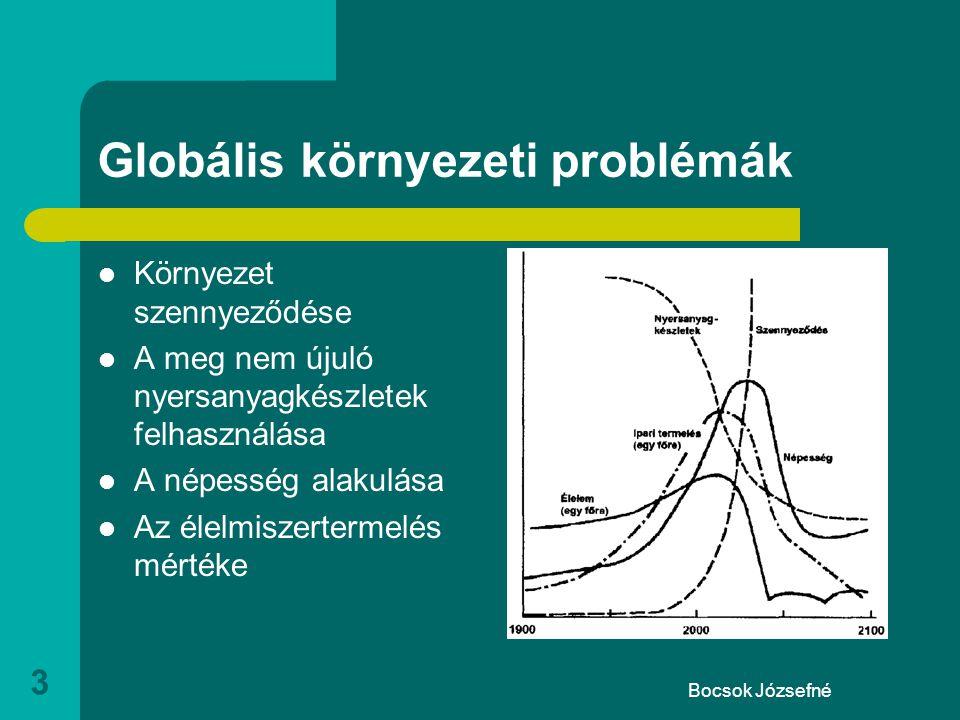 Bocsok Józsefné 3 Globális környezeti problémák  Környezet szennyeződése  A meg nem újuló nyersanyagkészletek felhasználása  A népesség alakulása  Az élelmiszertermelés mértéke