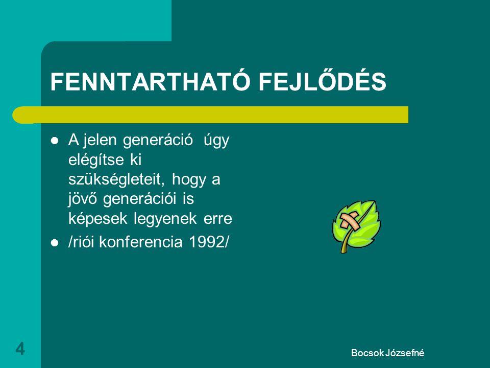 Bocsok Józsefné 4 FENNTARTHATÓ FEJLŐDÉS  A jelen generáció úgy elégítse ki szükségleteit, hogy a jövő generációi is képesek legyenek erre  /riói konferencia 1992/
