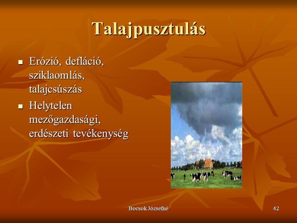 Bocsok Józsefné42 Talajpusztulás  Erózió, defláció, sziklaomlás, talajcsúszás  Helytelen mezőgazdasági, erdészeti tevékenység
