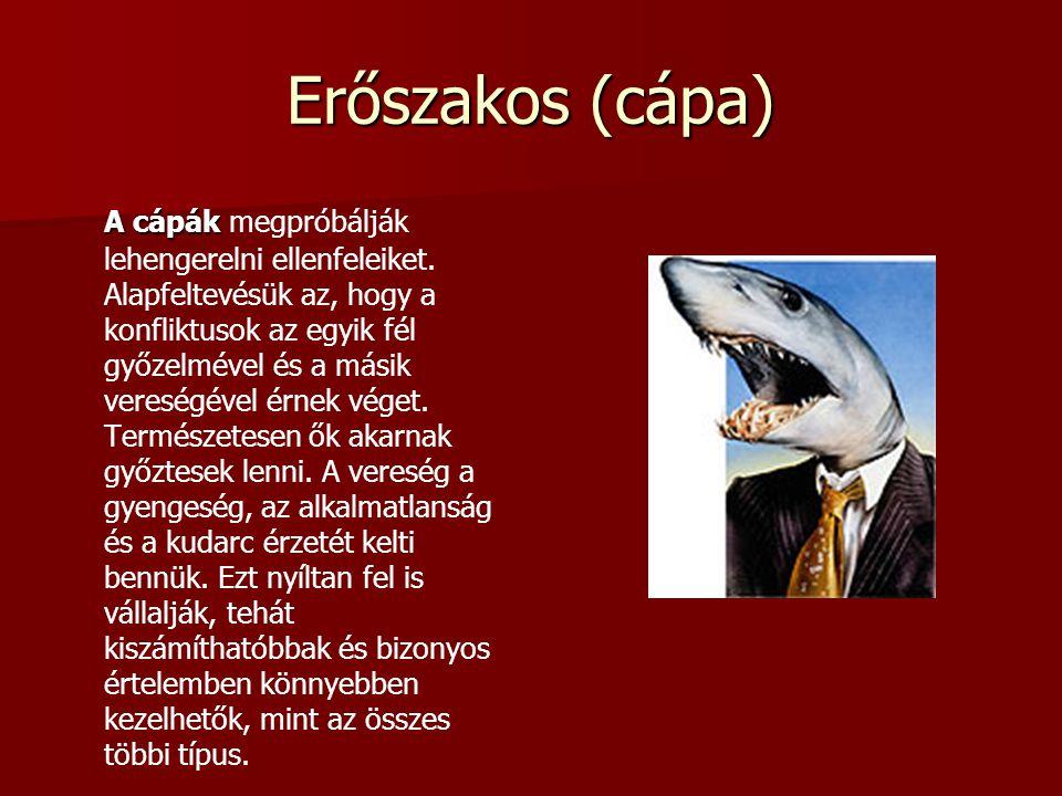 Erőszakos (cápa) A cápák A cápák megpróbálják lehengerelni ellenfeleiket. Alapfeltevésük az, hogy a konfliktusok az egyik fél győzelmével és a másik v