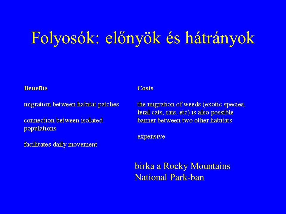 Folyosók: előnyök és hátrányok birka a Rocky Mountains National Park-ban