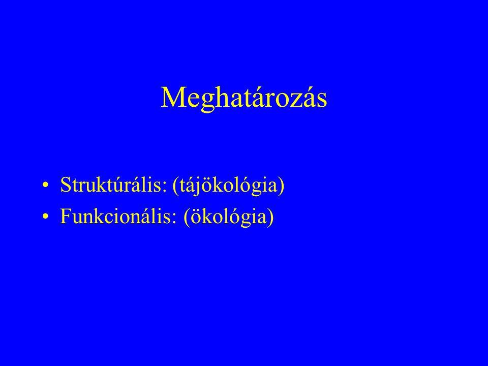 Meghatározás •Struktúrális: (tájökológia) •Funkcionális: (ökológia)