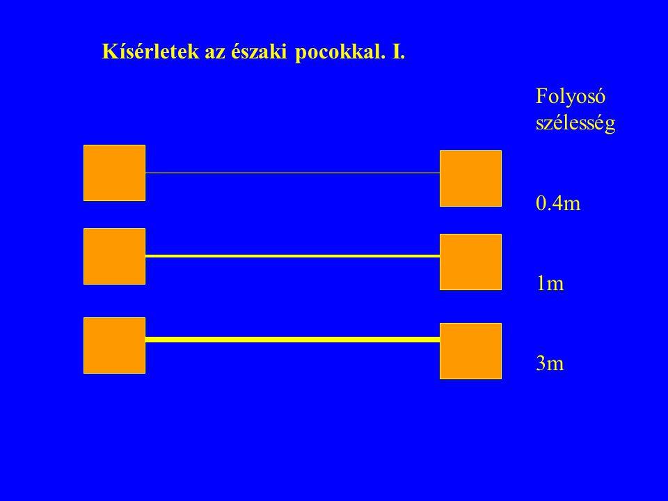 Folyosó szélesség 0.4m 1m 3m Kísérletek az északi pocokkal. I.