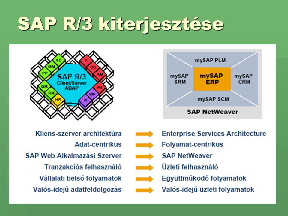 31 SAP R/3 kiterjesztése