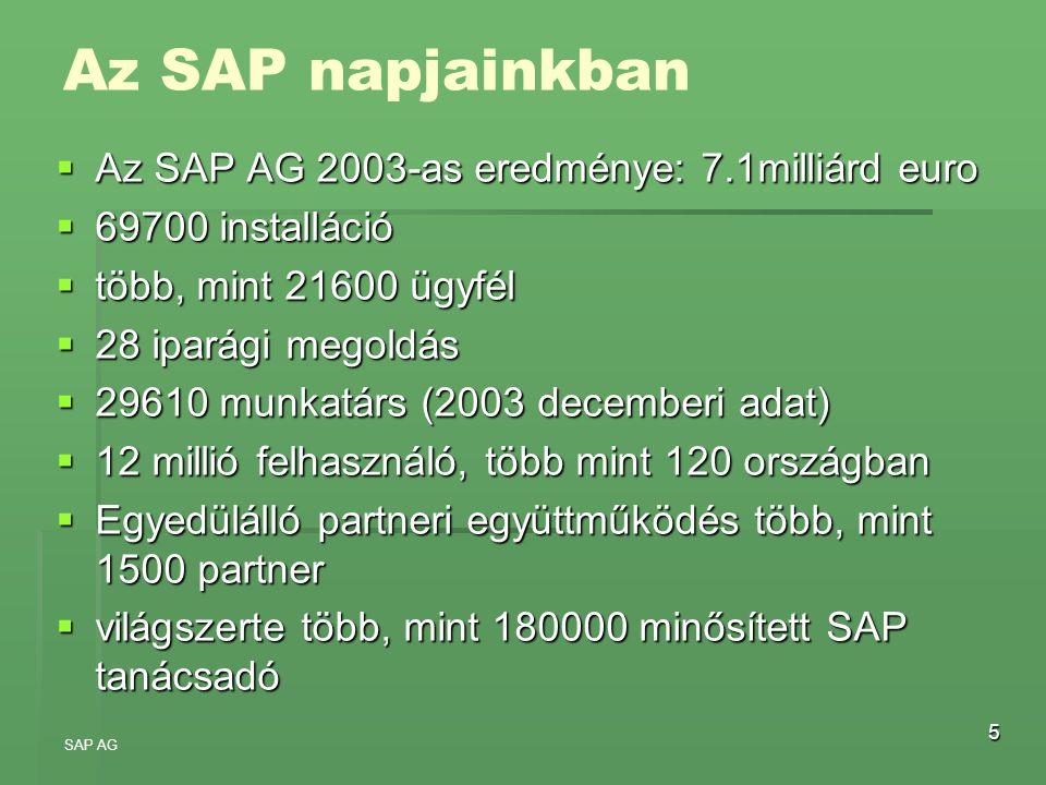 5 Az SAP napjainkban  Az SAP AG 2003-as eredménye: 7.1milliárd euro  69700 installáció  több, mint 21600 ügyfél  28 iparági megoldás  29610 munka