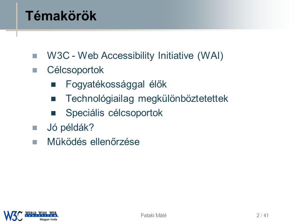 DSD Pataki Máté2 / 41 Témakörök  W3C - Web Accessibility Initiative (WAI)  Célcsoportok  Fogyatékossággal élők  Technológiailag megkülönböztetette