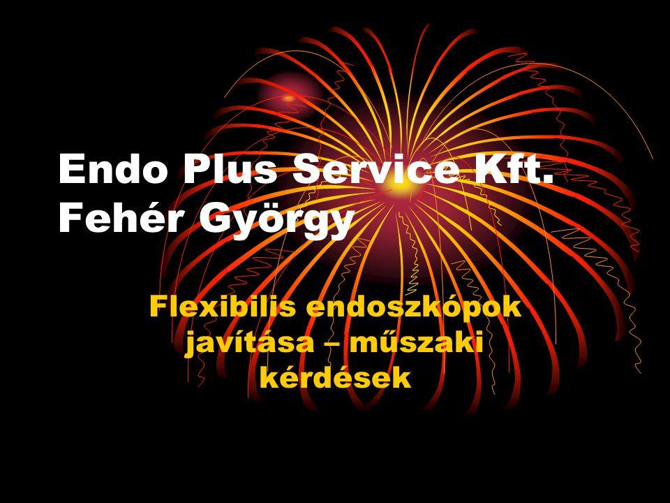 Endo Plus Service Kft. Fehér György Flexibilis endoszkópok javítása – műszaki kérdések