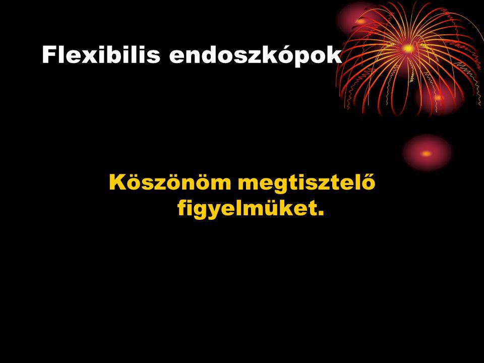 Flexibilis endoszkópok Köszönöm megtisztelő figyelmüket.