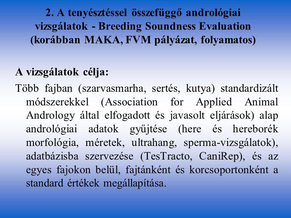 2. A tenyésztéssel összefüggő andrológiai vizsgálatok - Breeding Soundness Evaluation (korábban MAKA, FVM pályázat, folyamatos) A vizsgálatok célja: T
