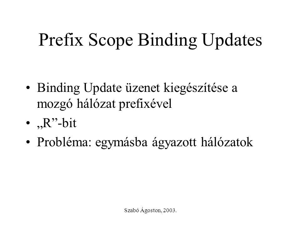 """Szabó Ágoston, 2003. Prefix Scope Binding Updates •Binding Update üzenet kiegészítése a mozgó hálózat prefixével •""""R""""-bit •Probléma: egymásba ágyazott"""