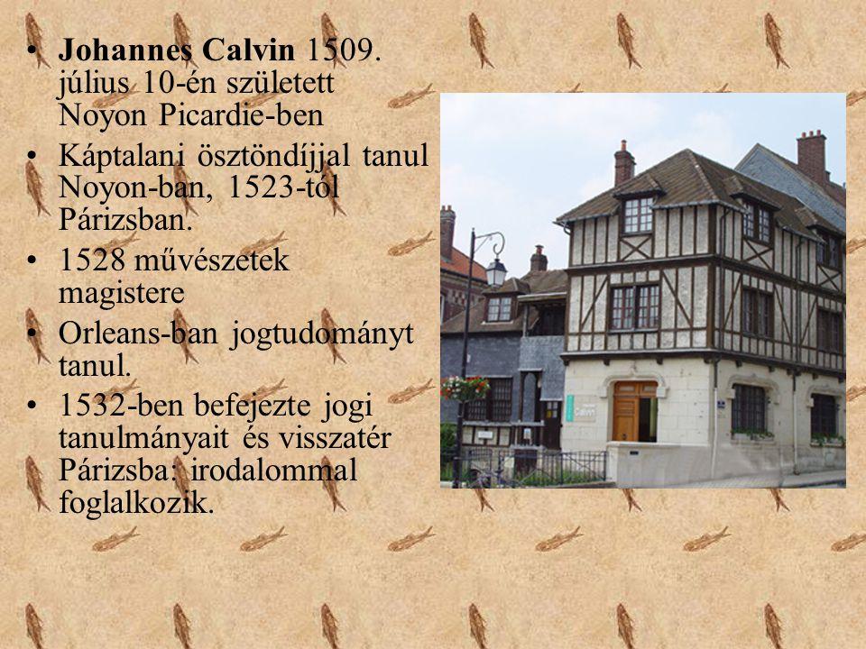 •Johannes Calvin 1509. július 10-én született Noyon Picardie-ben •Káptalani ösztöndíjjal tanul Noyon-ban, 1523-tól Párizsban. •1528 művészetek magiste