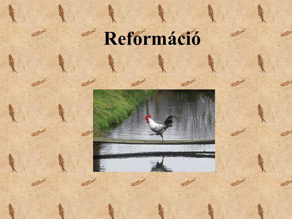 1.A reformáció kezdetektől 1526-ig. 2. A magyar reformáció eseményei 1526- 1541 között.
