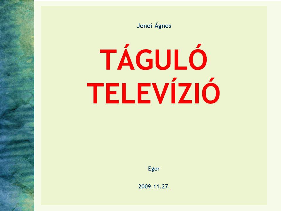 Jenei Ágnes TÁGULÓ TELEVÍZIÓ Eger 2009.11.27.
