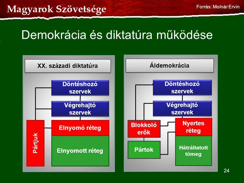 Demokrácia és diktatúra működése 24 Döntéshozó szervek Végrehajtó szervek Elnyomott réteg Elnyomó réteg Pártjuk XX. századi diktatúra Döntéshozó szerv
