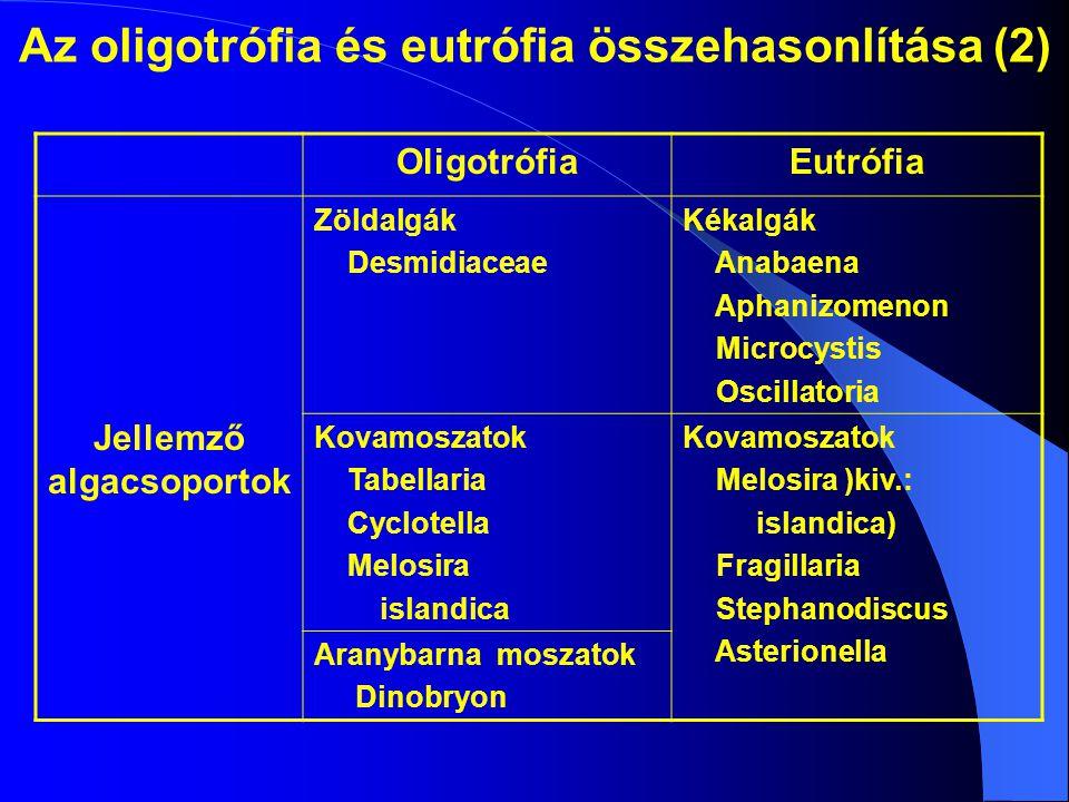 Az oligotrófia és eutrófia összehasonlítása (2) OligotrófiaEutrófia Jellemző algacsoportok Zöldalgák Desmidiaceae Kékalgák Anabaena Aphanizomenon Micr
