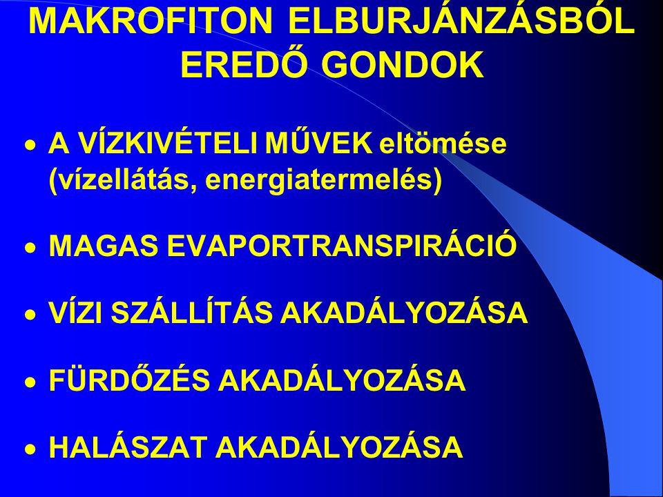 MAKROFITON ELBURJÁNZÁSBÓL EREDŐ GONDOK  A VÍZKIVÉTELI MŰVEK eltömése (vízellátás, energiatermelés)  MAGAS EVAPORTRANSPIRÁCIÓ  VÍZI SZÁLLÍTÁS AKADÁL