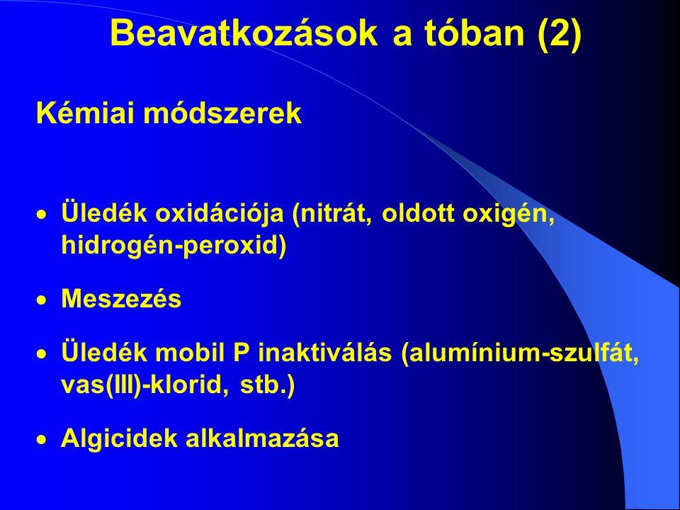 Beavatkozások a tóban (2) Kémiai módszerek  Üledék oxidációja (nitrát, oldott oxigén, hidrogén-peroxid)  Meszezés  Üledék mobil P inaktiválás (alum