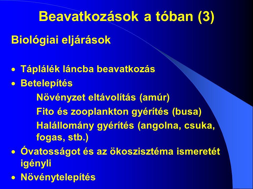 Beavatkozások a tóban (3) Biológiai eljárások  Táplálék láncba beavatkozás  Betelepítés Növényzet eltávolítás (amúr) Fito és zooplankton gyérítés (b