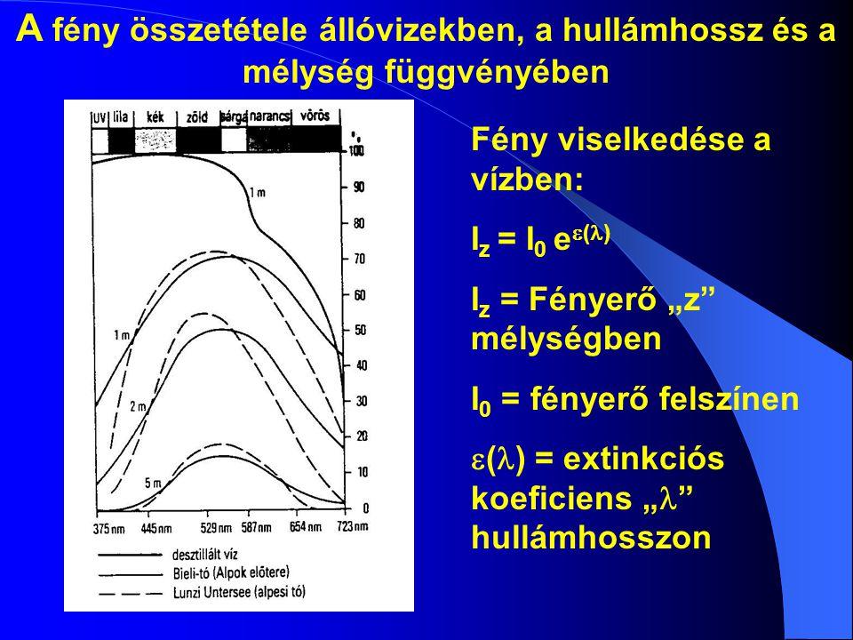 """A fény összetétele állóvizekben, a hullámhossz és a mélység függvényében Fény viselkedése a vízben: I z = I 0 e  (  ) I z = Fényerő """"z"""" mélységben I"""