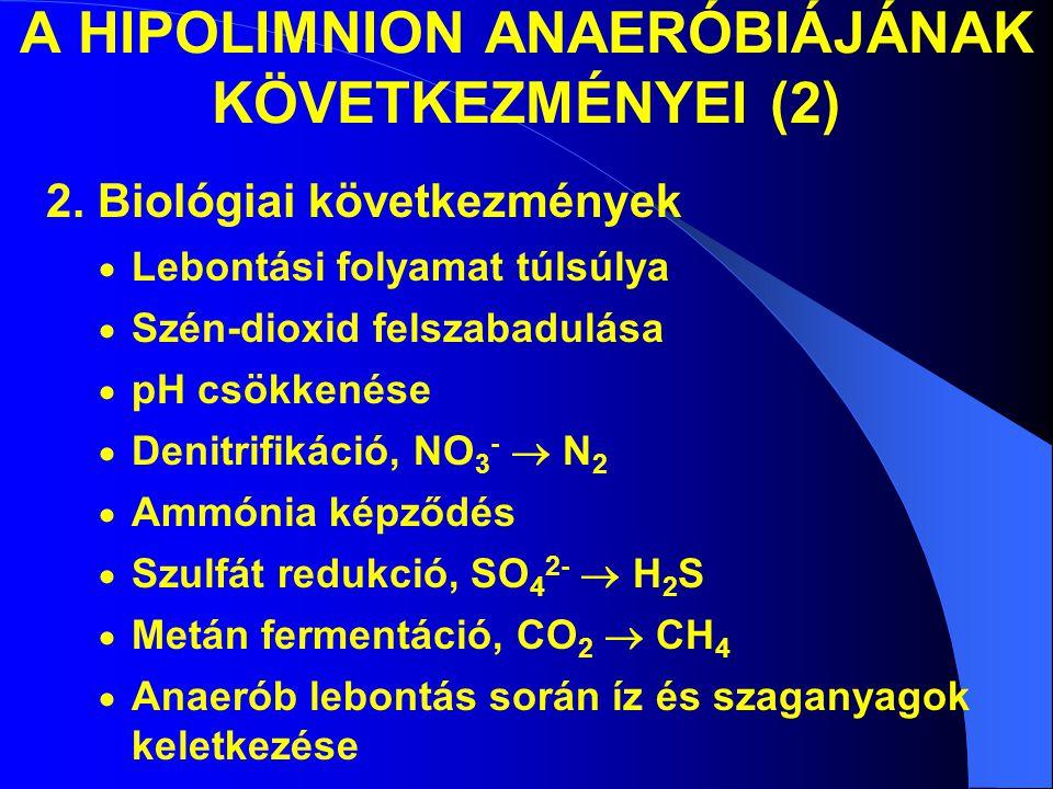 A HIPOLIMNION ANAERÓBIÁJÁNAK KÖVETKEZMÉNYEI (2) 2. Biológiai következmények  Lebontási folyamat túlsúlya  Szén-dioxid felszabadulása  pH csökkenése