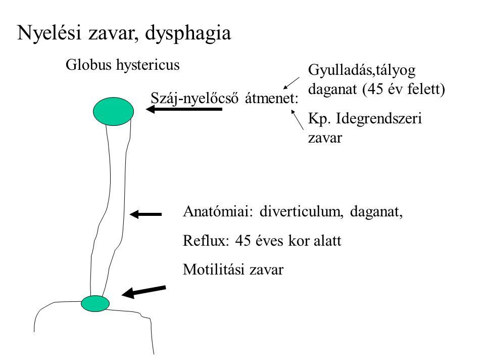 Nyelési zavar, dysphagia Globus hystericus Száj-nyelőcső átmenet: Gyulladás,tályog daganat (45 év felett) Kp.