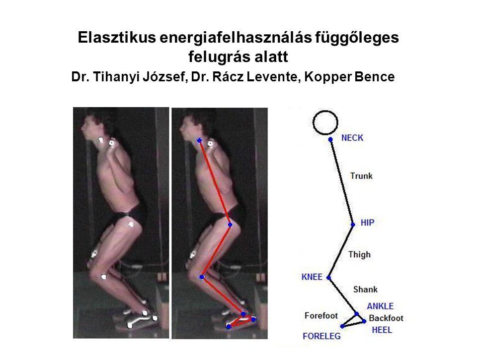 Az izomnyújtás (excentrikus kontrakció) hatása az izomláz kialakulására, az izom energetikájára és az erő fejlődésére. Dr. Tihanyi József, Dr. Rácz Le