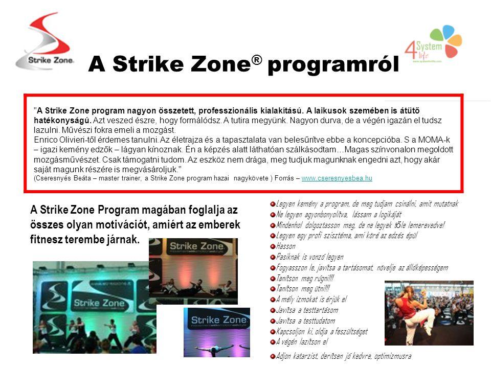 A Strike Zone ® programról A Strike Zone program nagyon összetett, professzionális kialakítású.